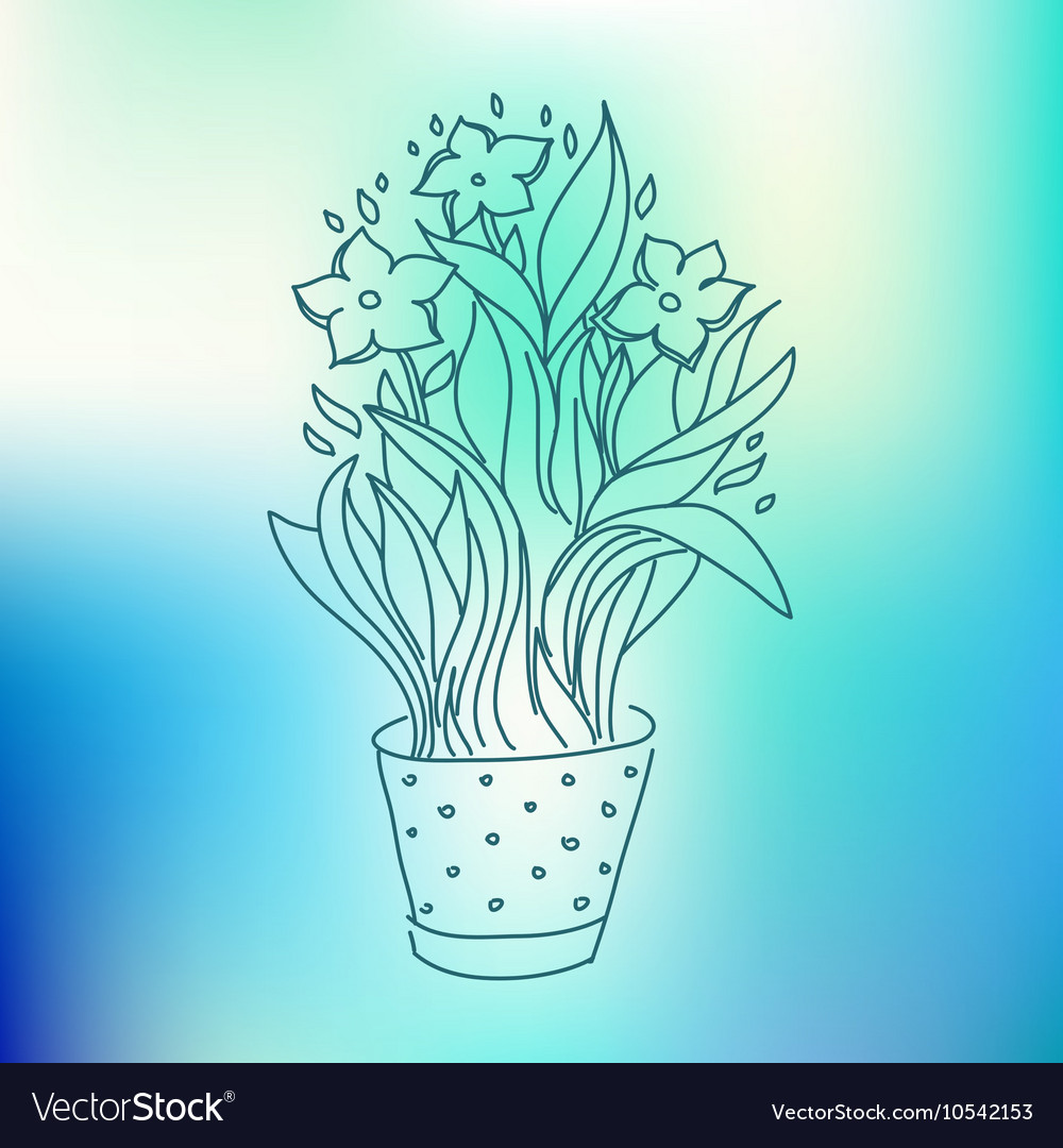 Narcissus in flowerpot sketch drawing vector image