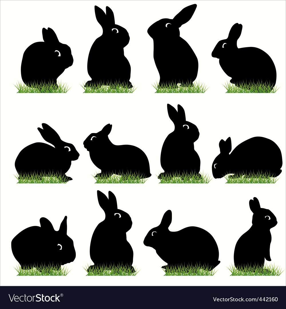 Rabbit02 vector image