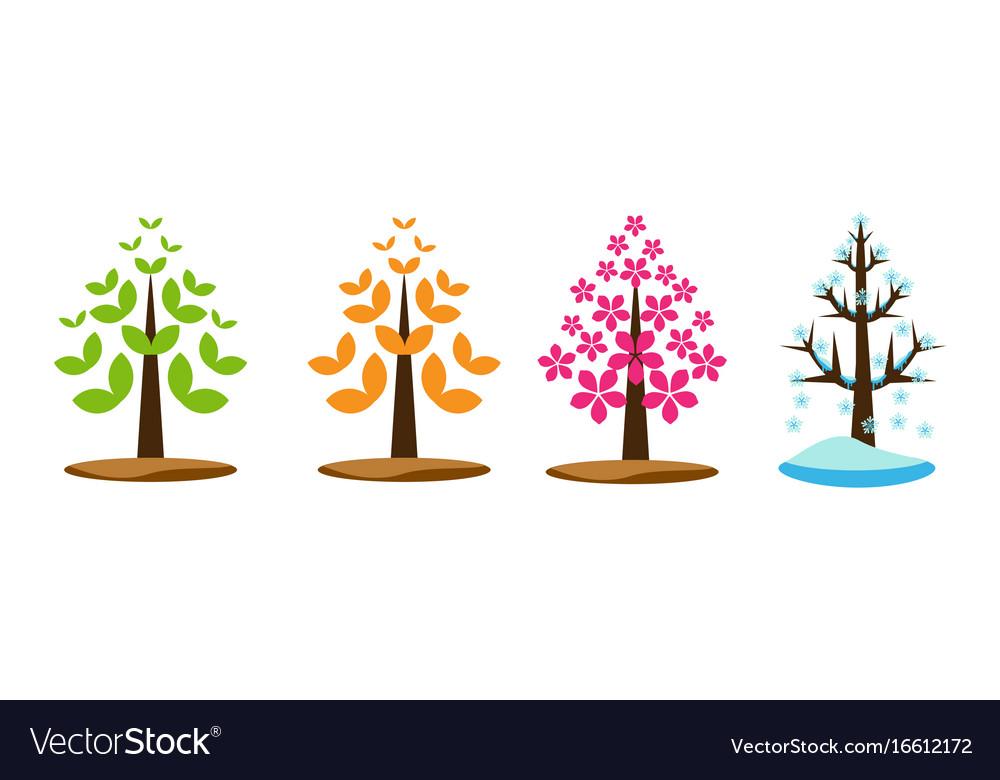 Four season tree vector image