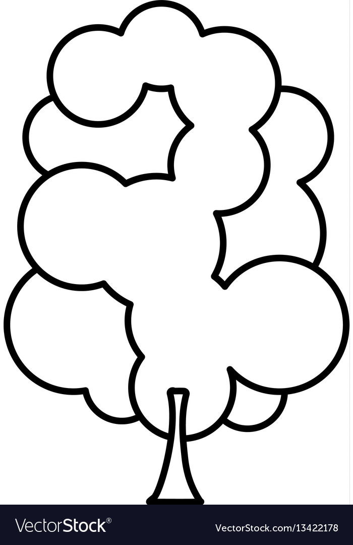 Sketch silhouette tree with several crown leaves vector image
