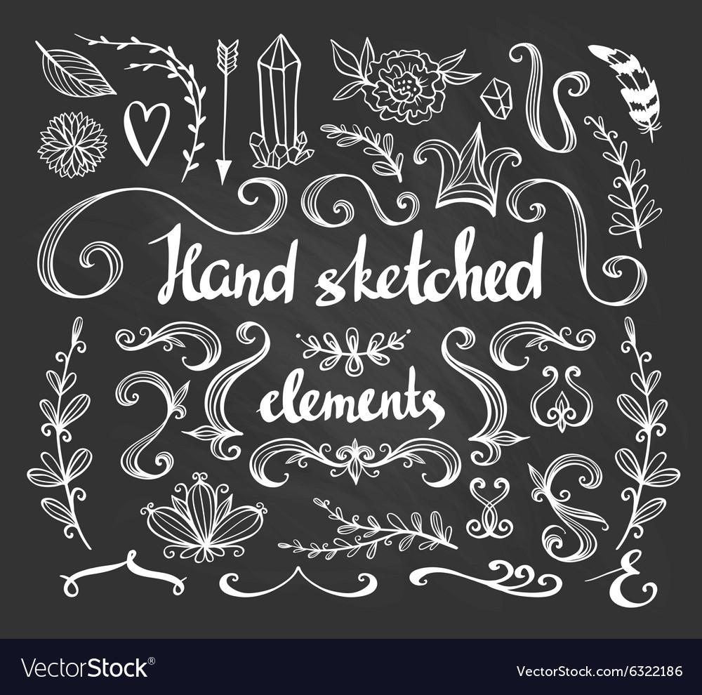 Hand Drawn vintage floral elements Set of flowers vector image