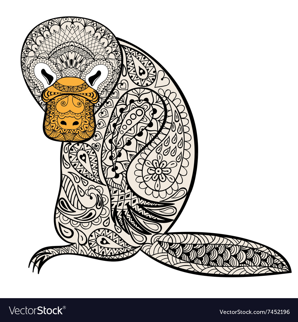 Zentangle Australian platypus totem for adult anti vector image