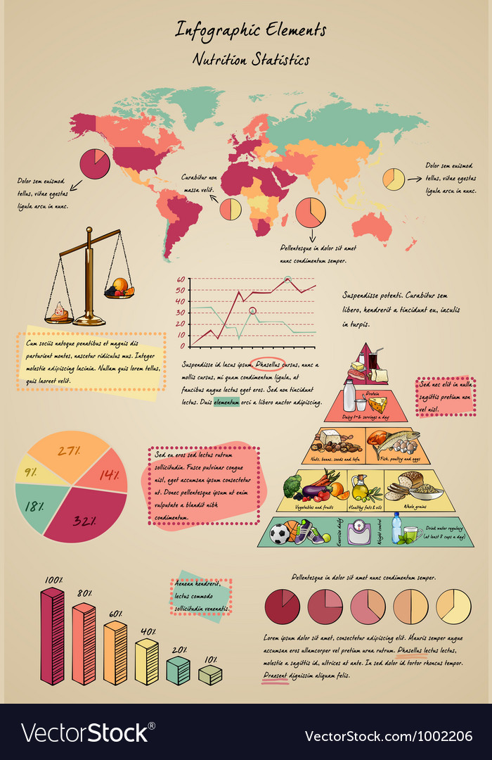 Infographic elements nutrition vector image