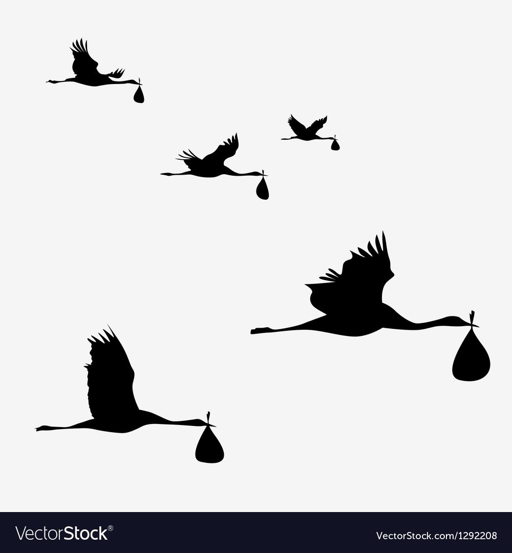 Crane pack with baby bags vector image