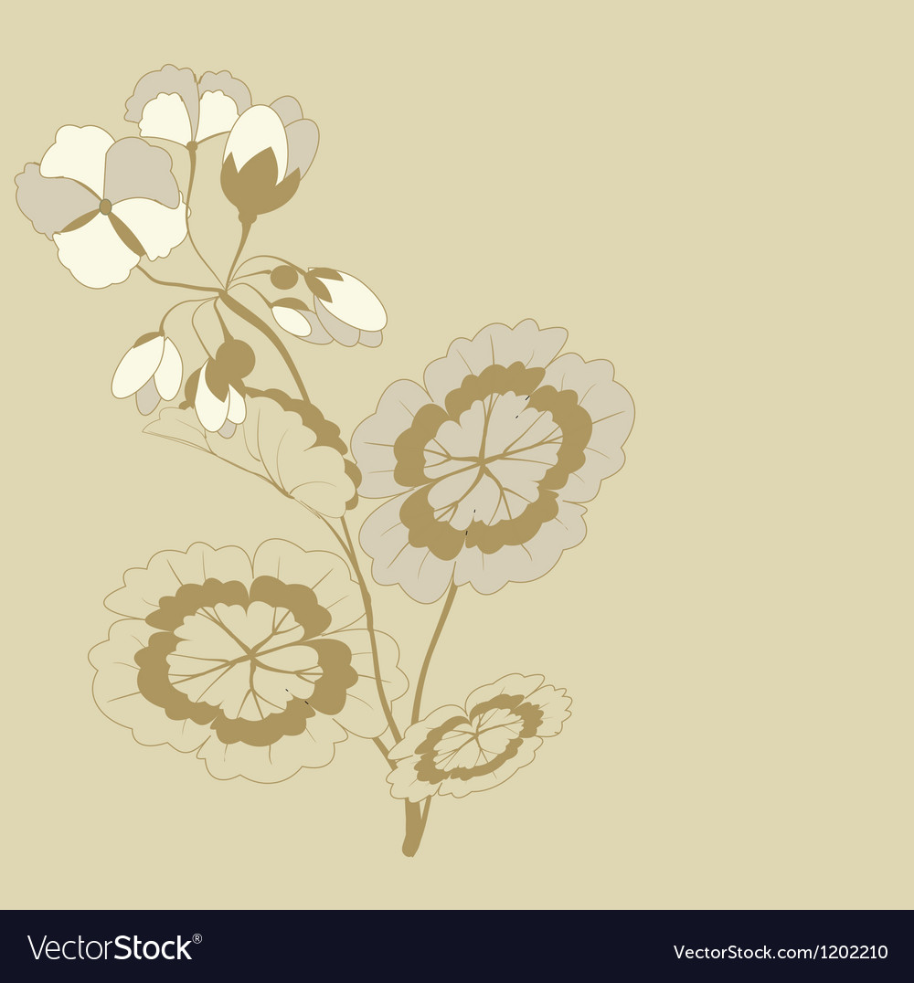 Pelargonium branch vector image
