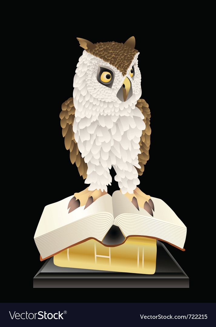 Book smart owl vector image