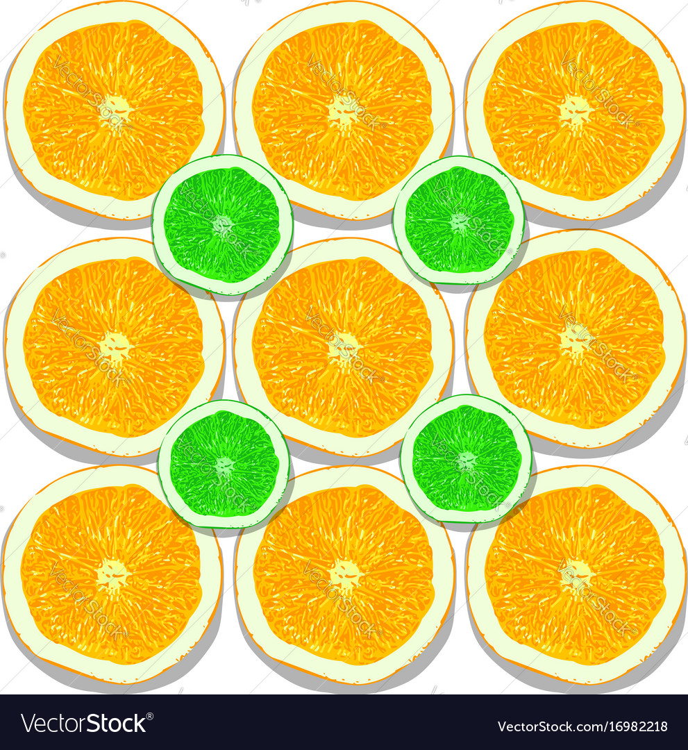 Lemon and orange slices on white background vector image
