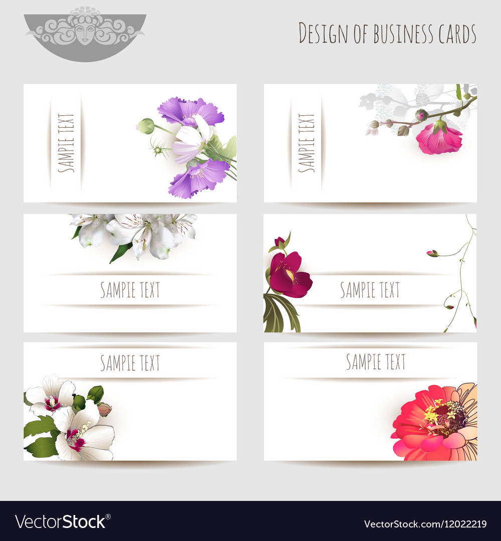 Business cards with floral elements vector image