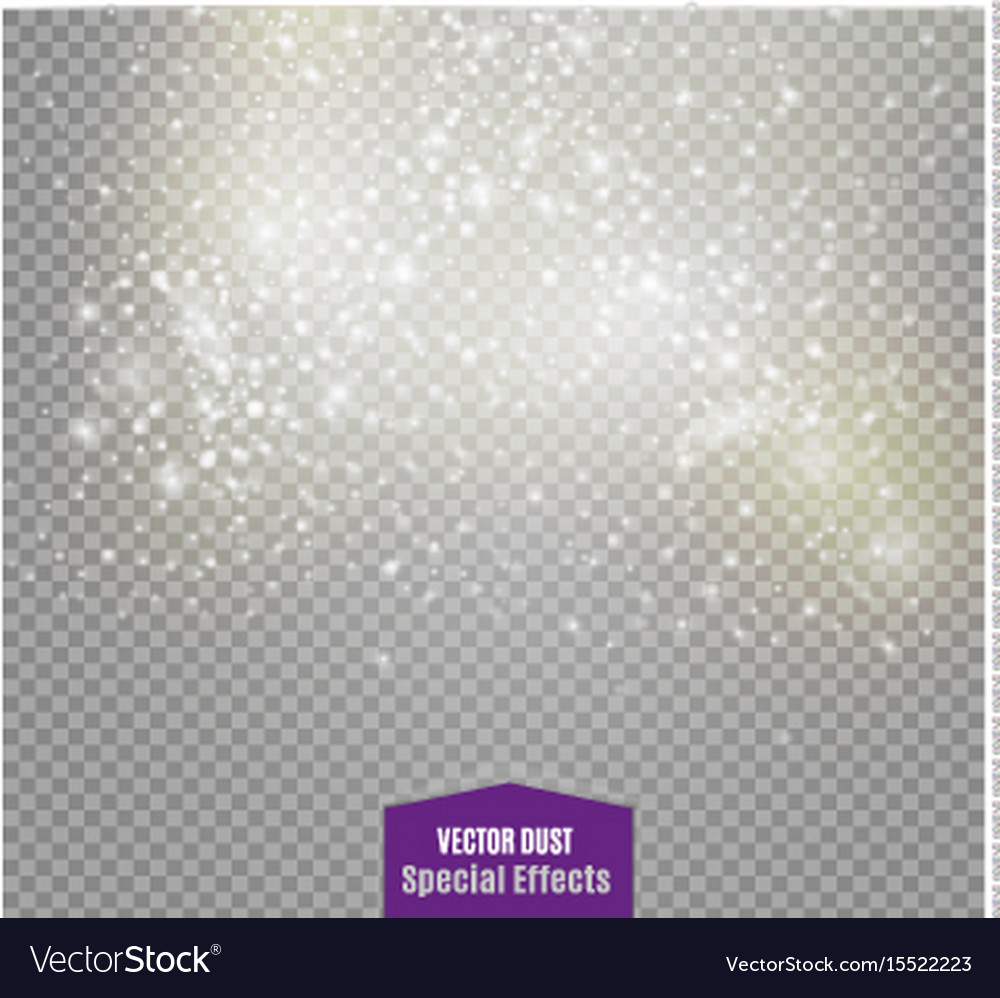 Dust on a transparent backgroundbright starsthe vector image