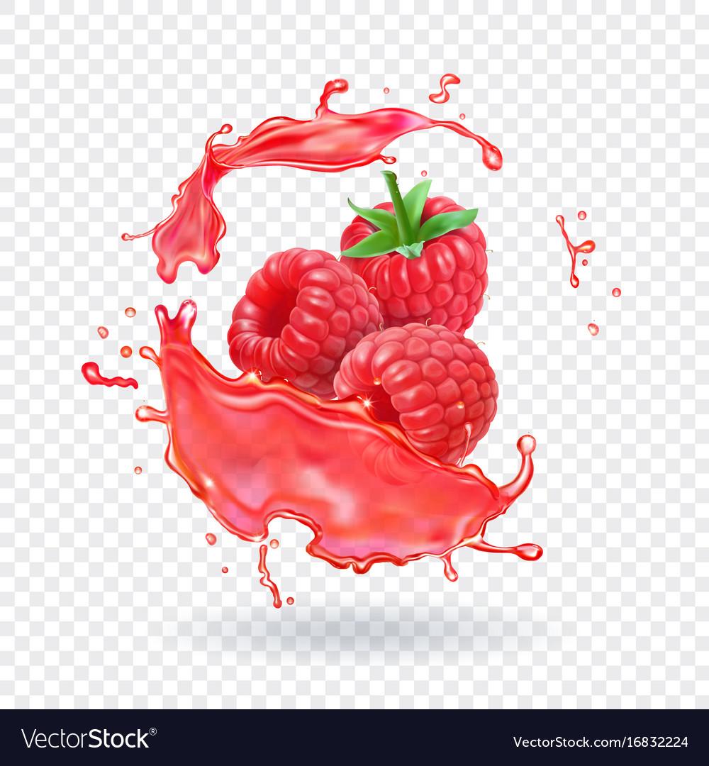 Raspberry juice fresh fruit splash vector image