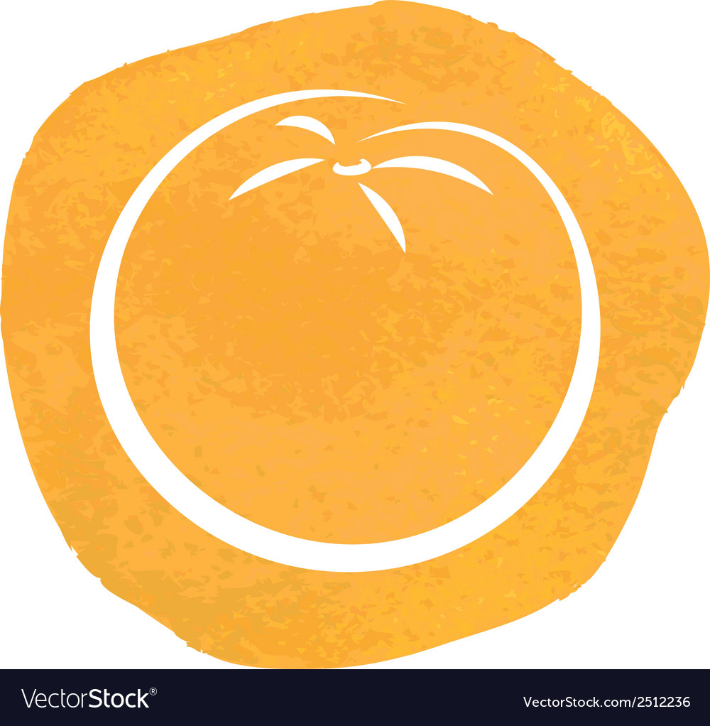 Sketch of orange vector image