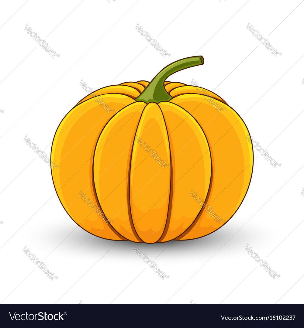 list of synonyms and antonyms of the word pumpkin cartoon