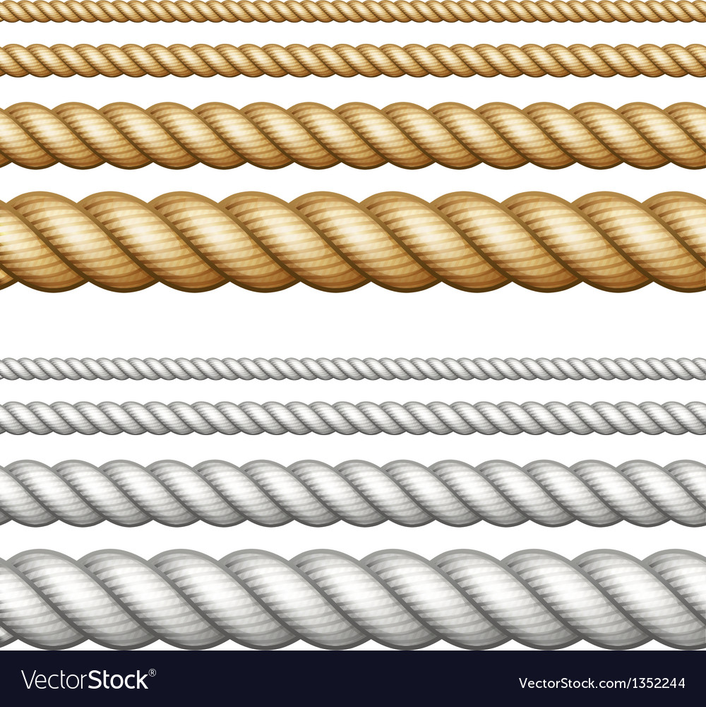 Set of ropes on white vector image