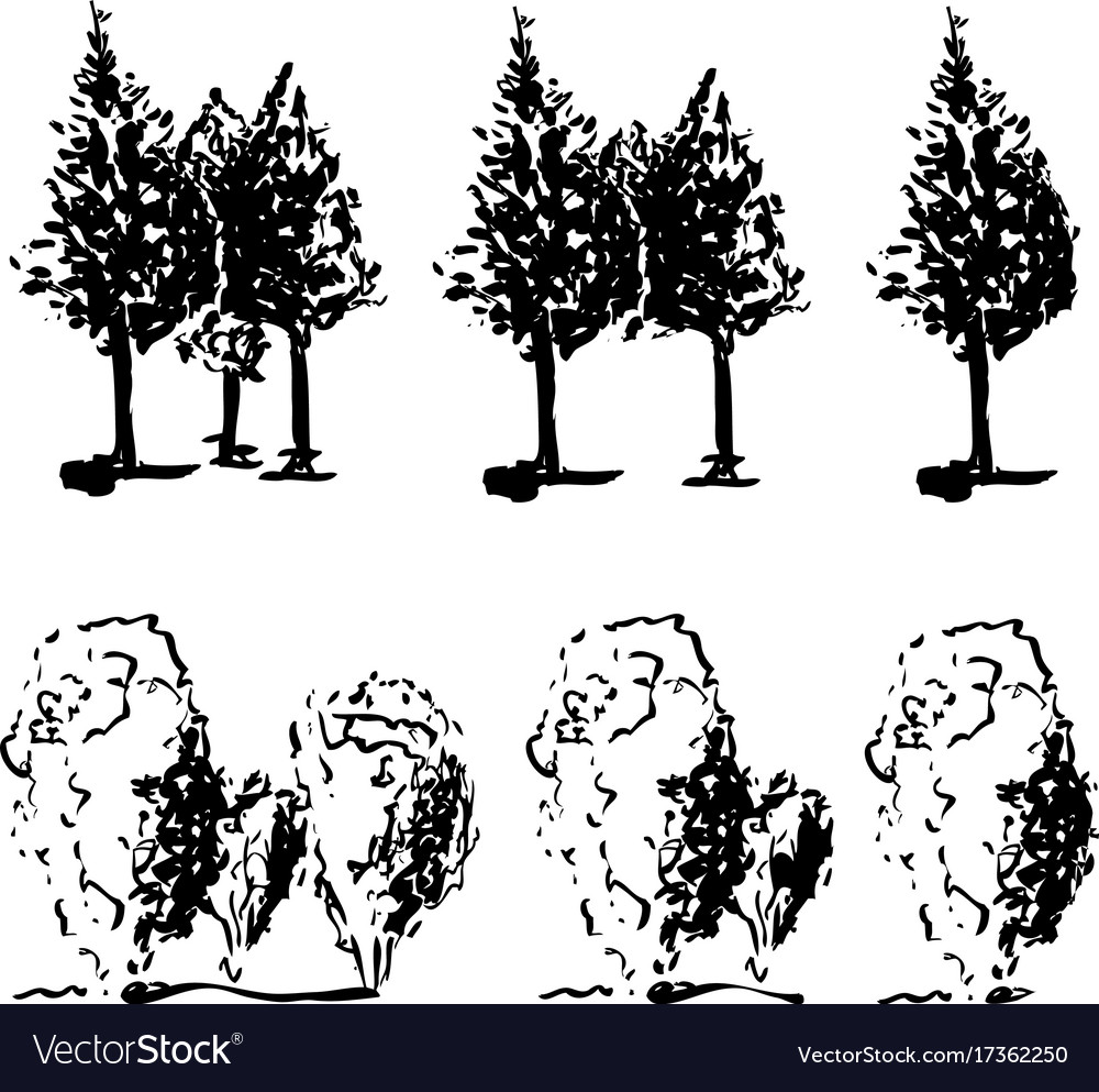 Set of trees three two and one tree in line vector image