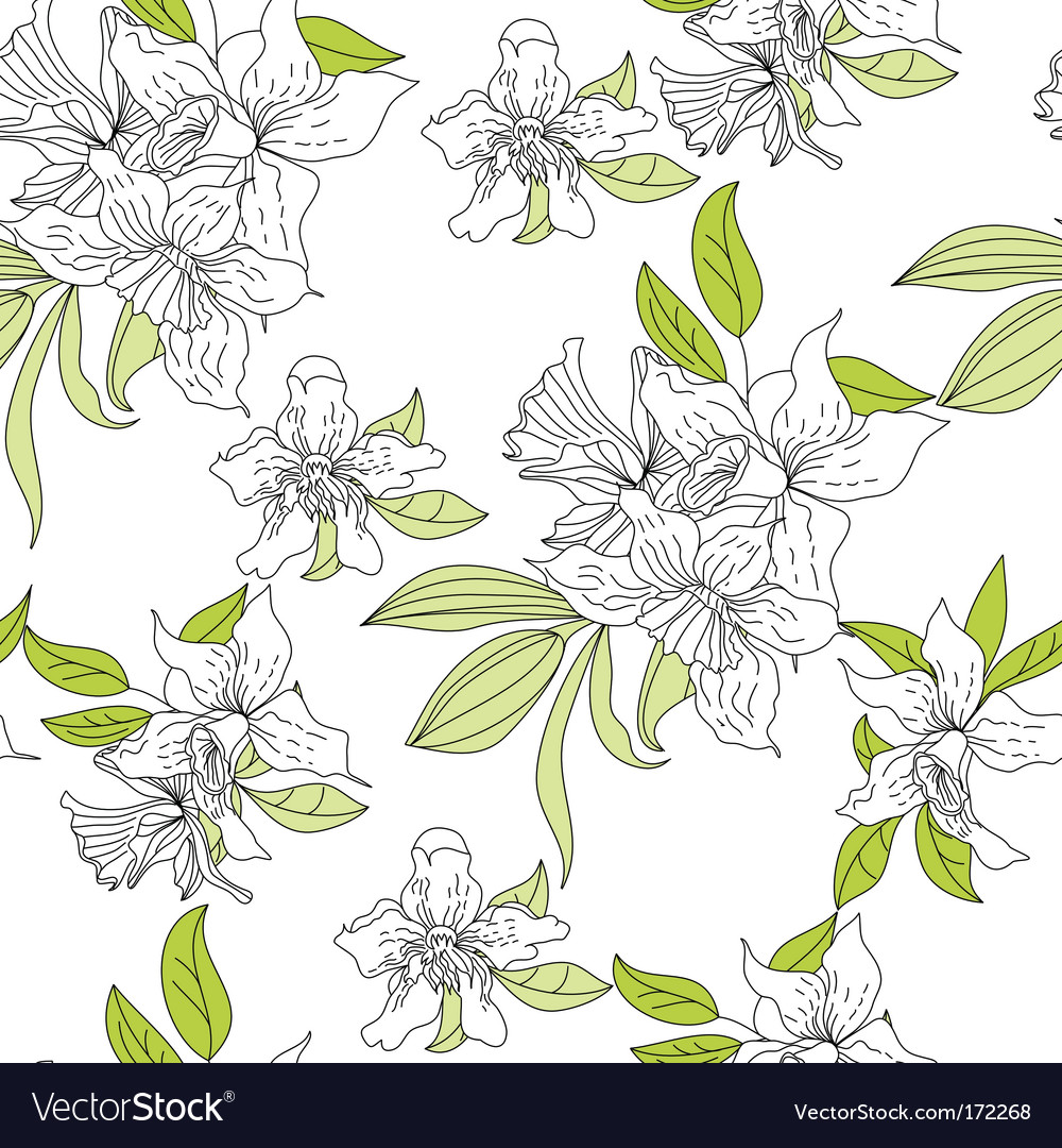 Narcissus floral wallpaper vector image