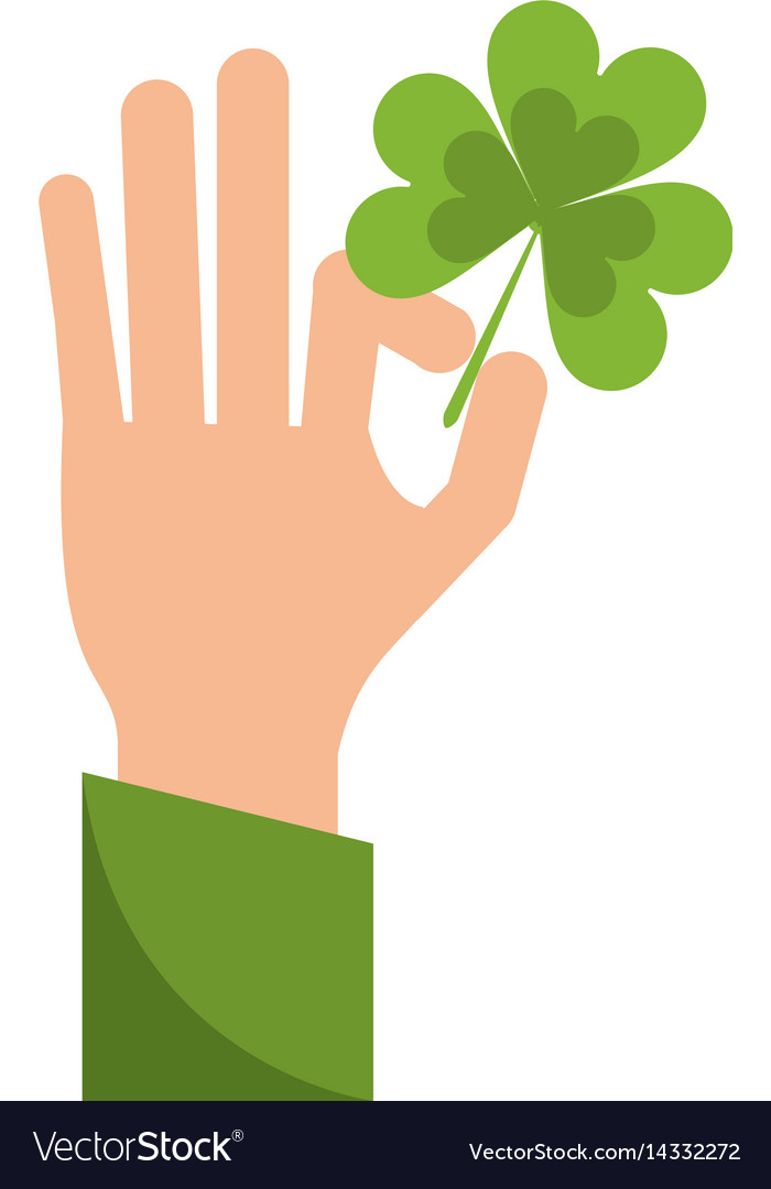 Hand holding clover st patricks day vector image
