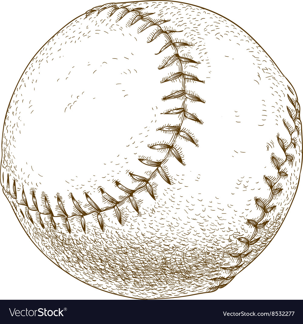 Engraving baseball ball vector image