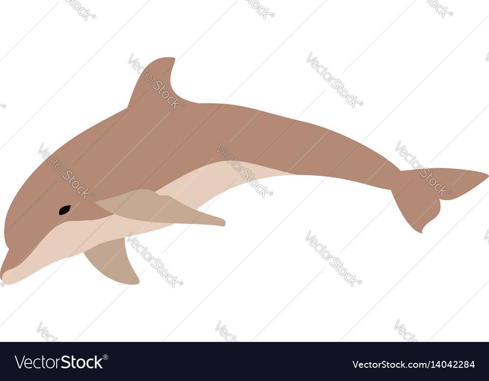 Cute dolphin jumping cartoon character vector image