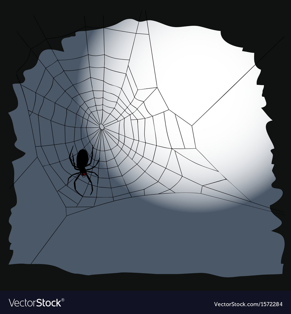 Halloween background Spider on a cobweb Royalty Free Vector