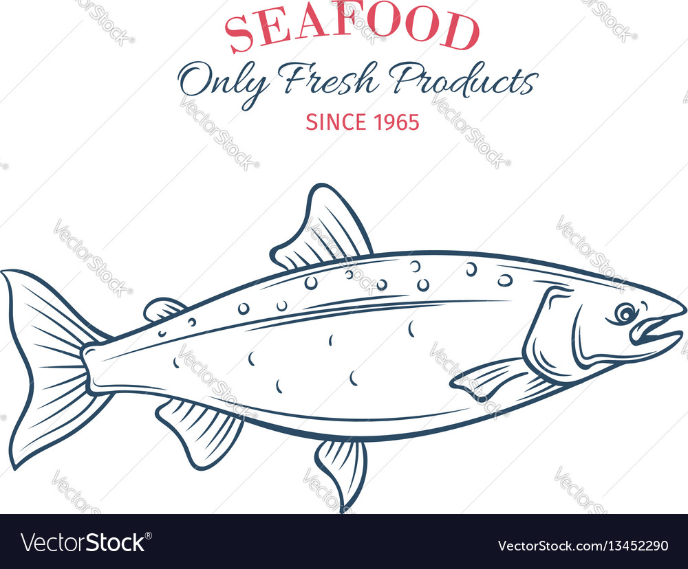 Hand drawn salmon icon vector image
