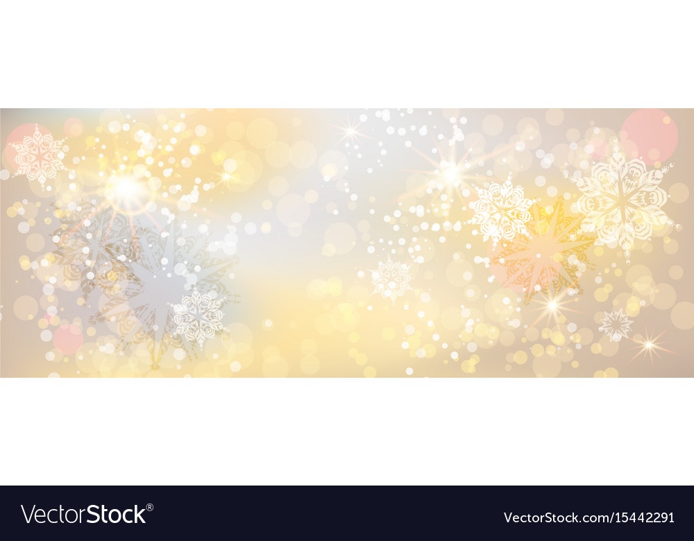 Holiday light banner vector image