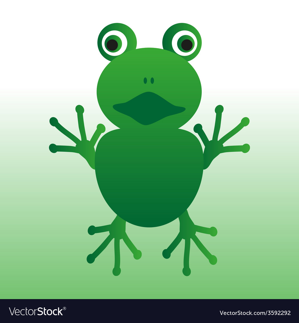 Isolated green frog animal looks at you eps10 vector image