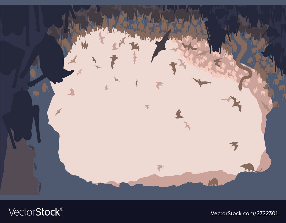 Cave life vector image