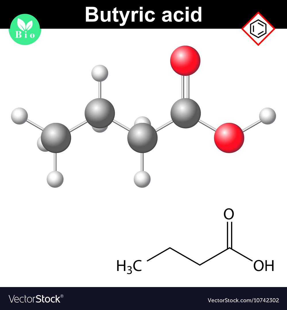 Butanoic acid molecule vector image