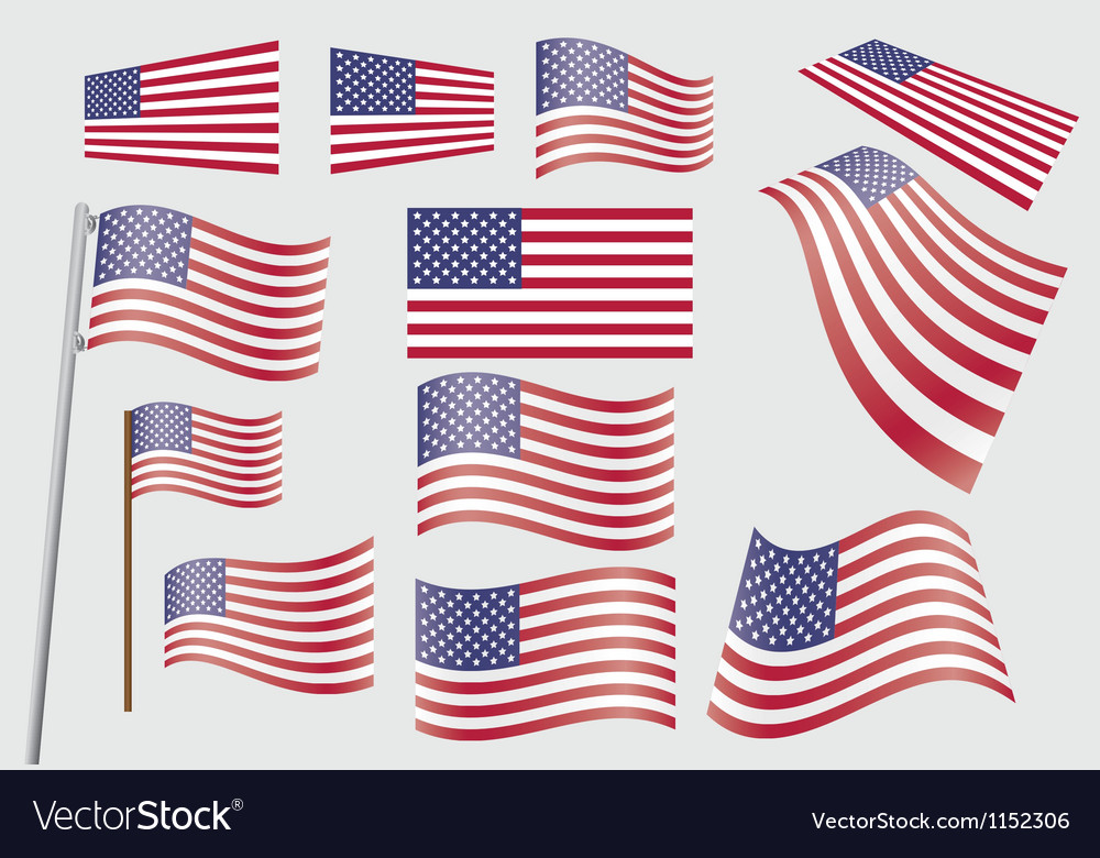 United States flag vector image