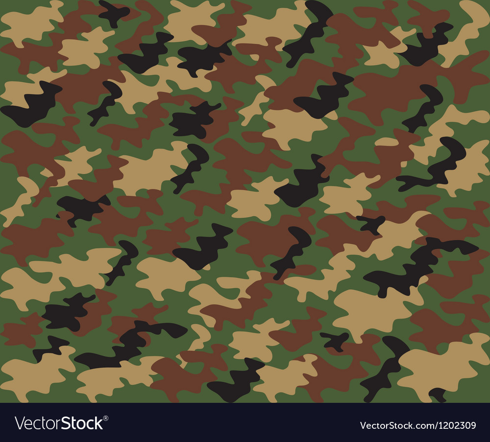 Military camouflage pattern vector image