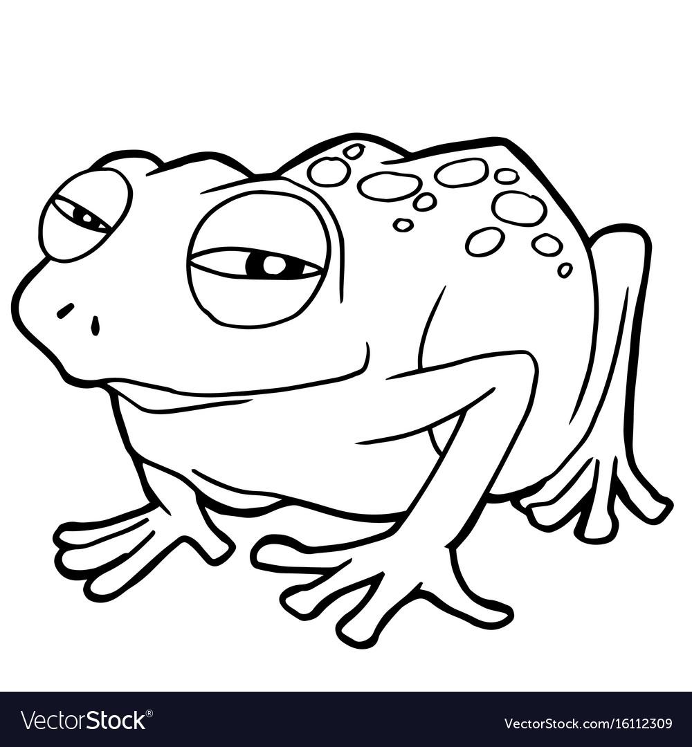 Cartoon cute frog coloring page vector image
