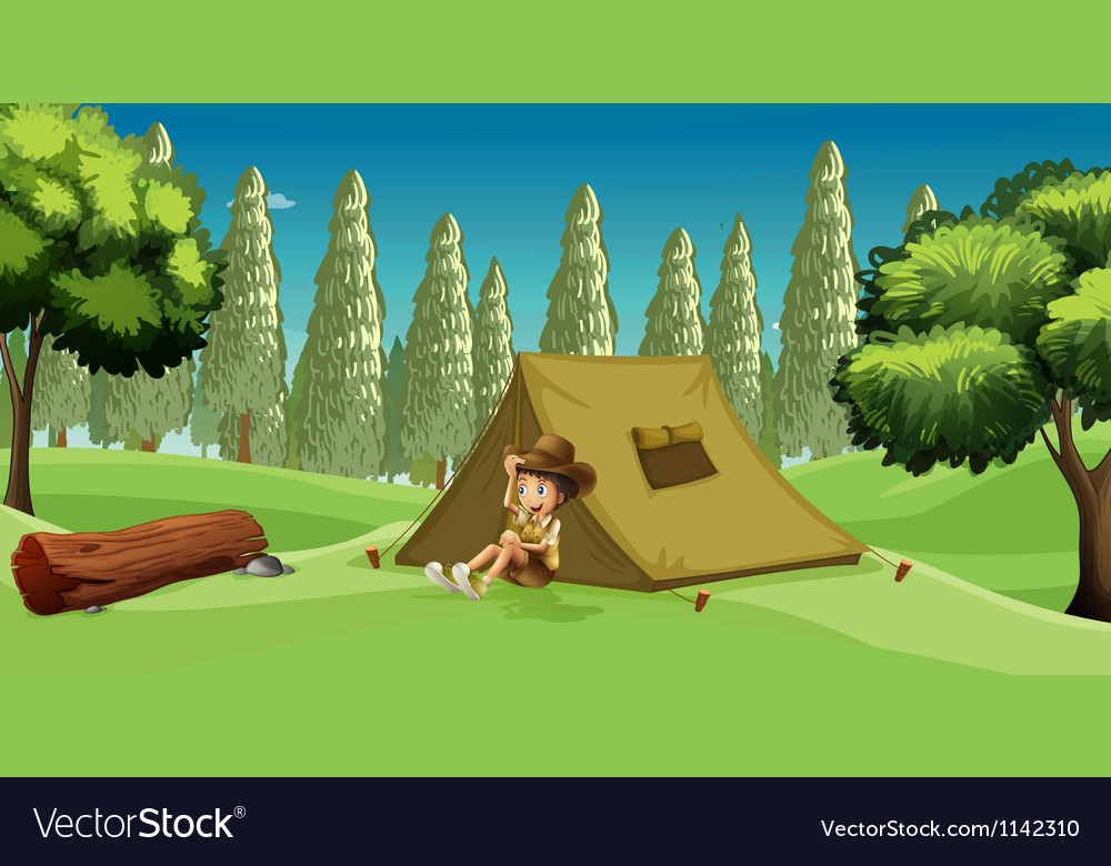 A Girl Scout vector image