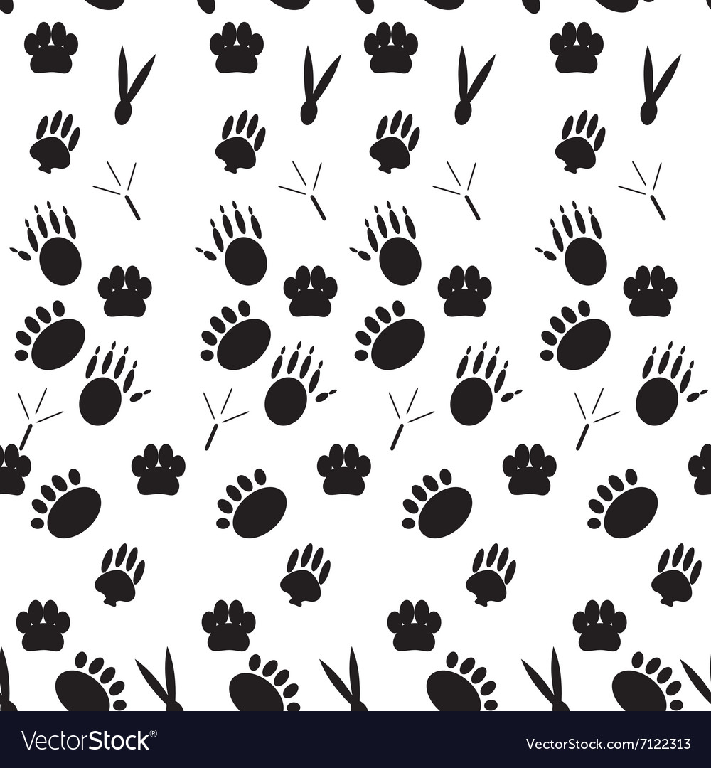 Monochrome pattern footprints various mammals vector image