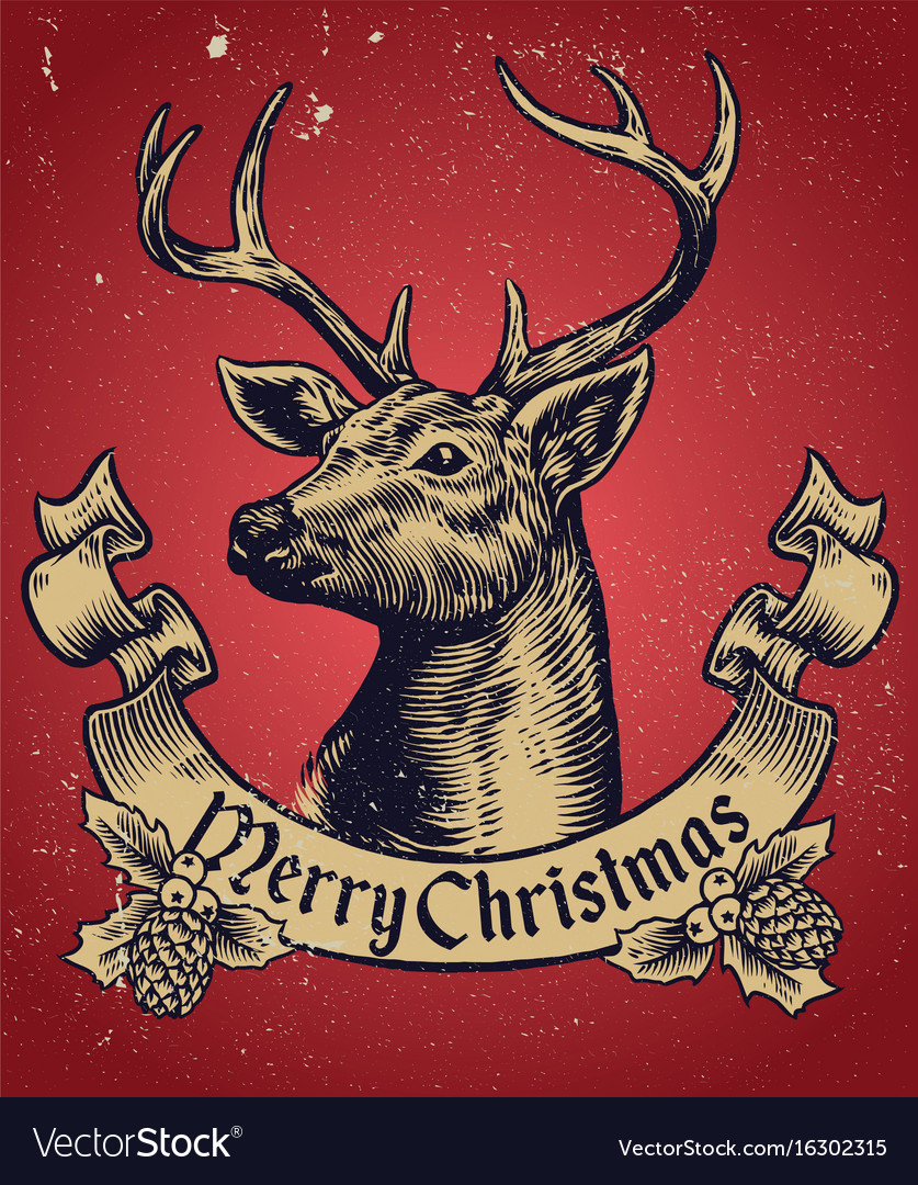 Hand drawing style of christmas deer with text vector image