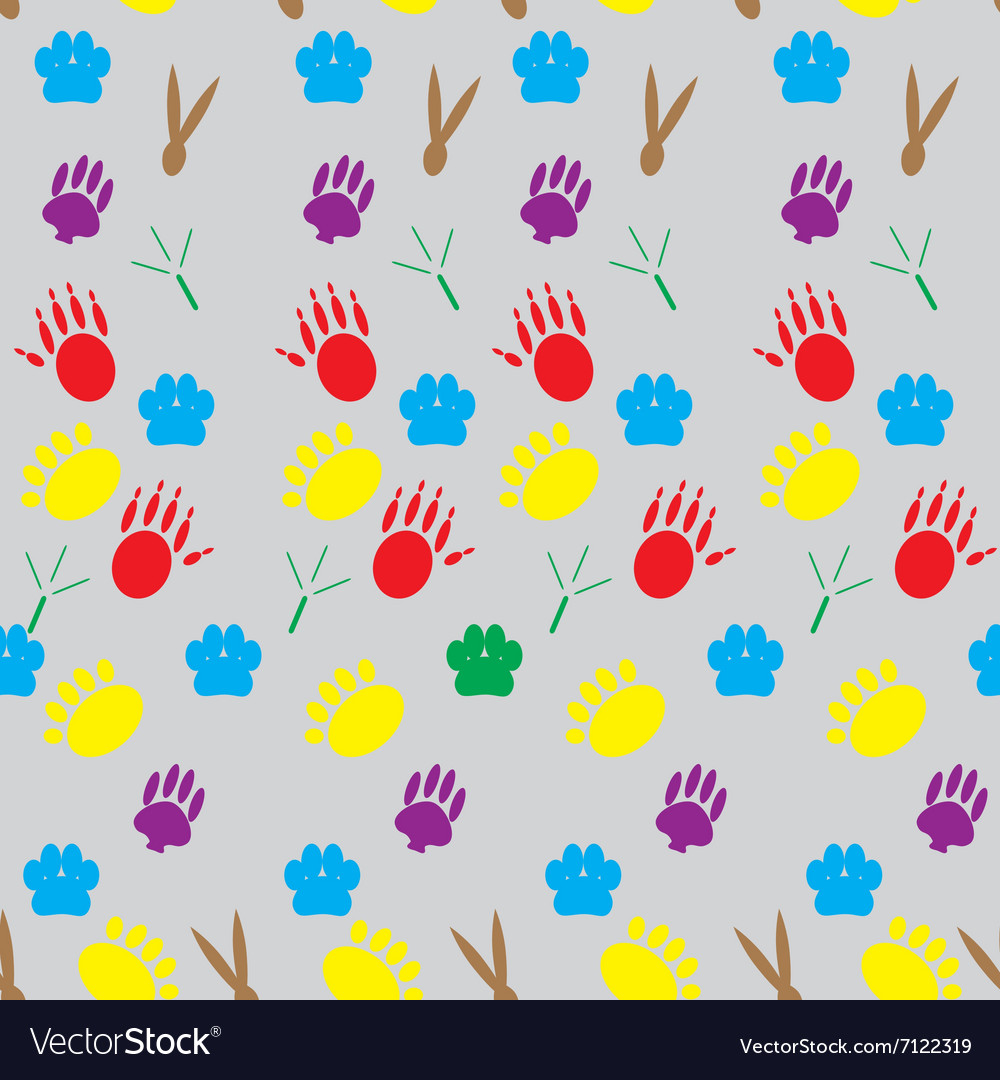Color pattern footprints various mammals vector image