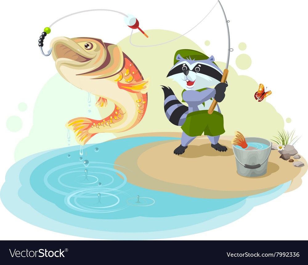Raccoon scout fishing Fisherman caught big fish vector image