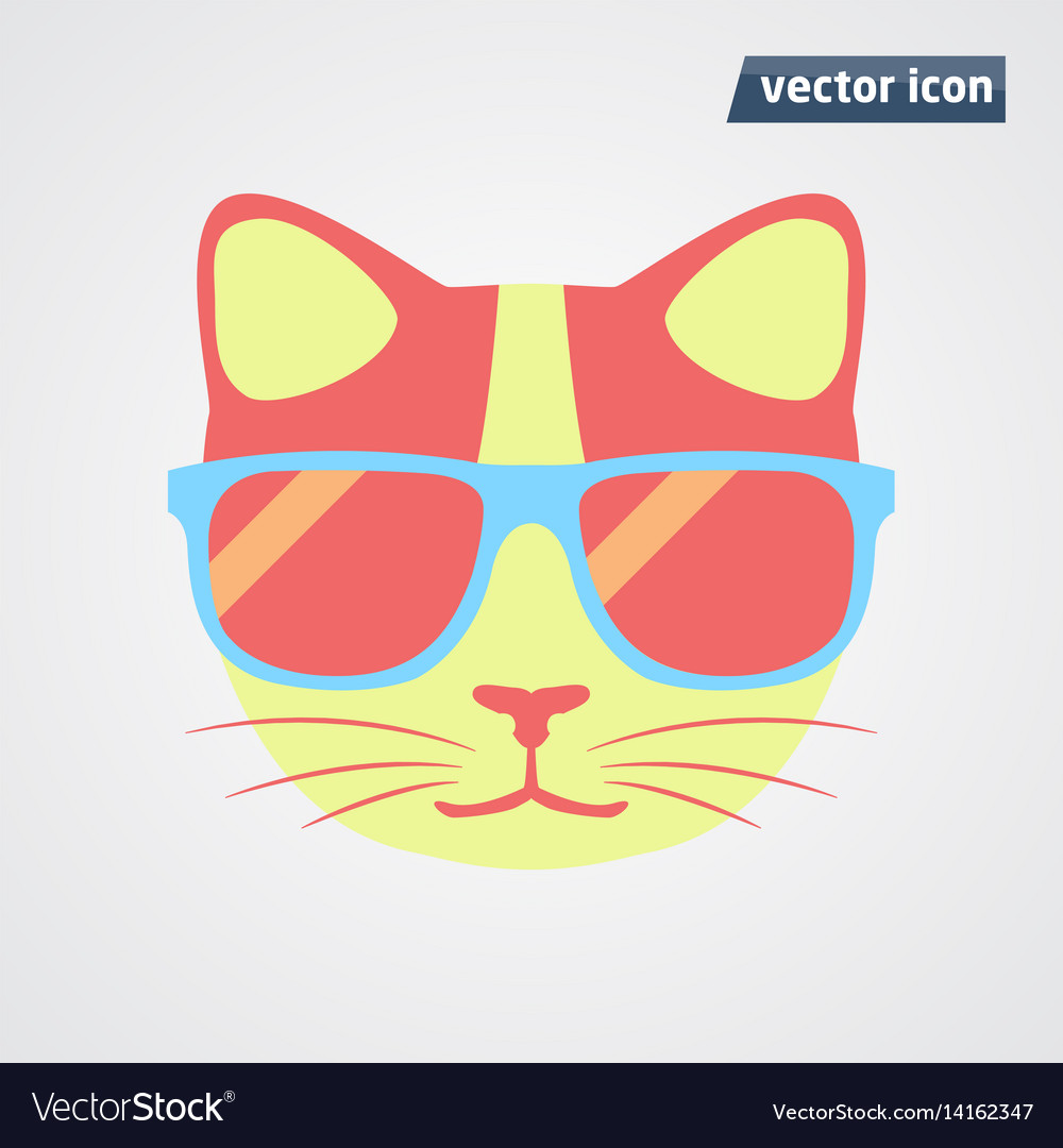 Cat in sunglasses vector image
