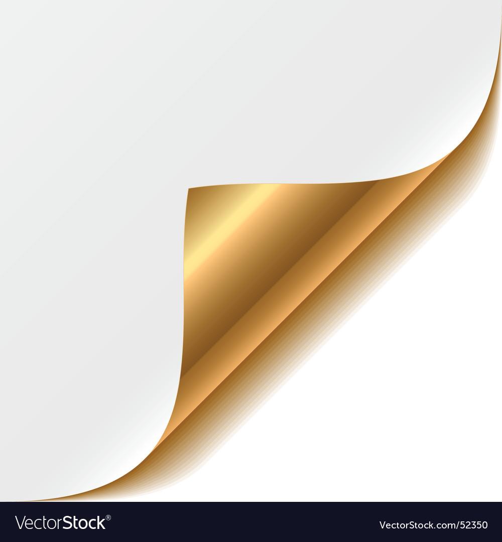Gold corner vector image