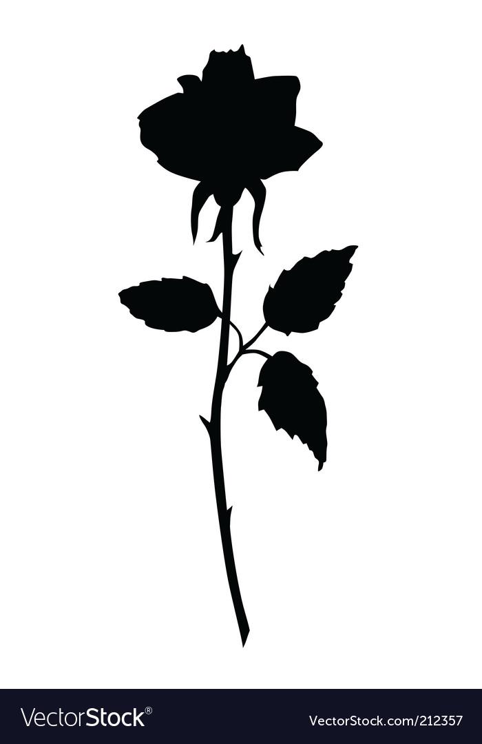 Rose black silhouette vector image