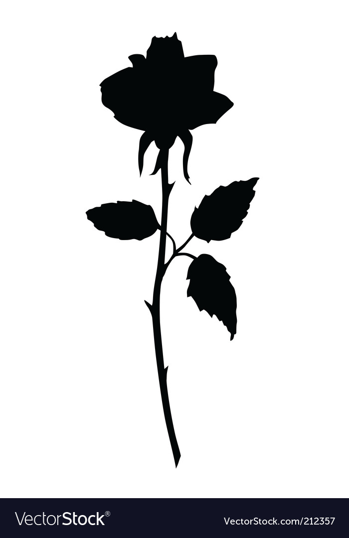 rose black silhouette royalty free vector image