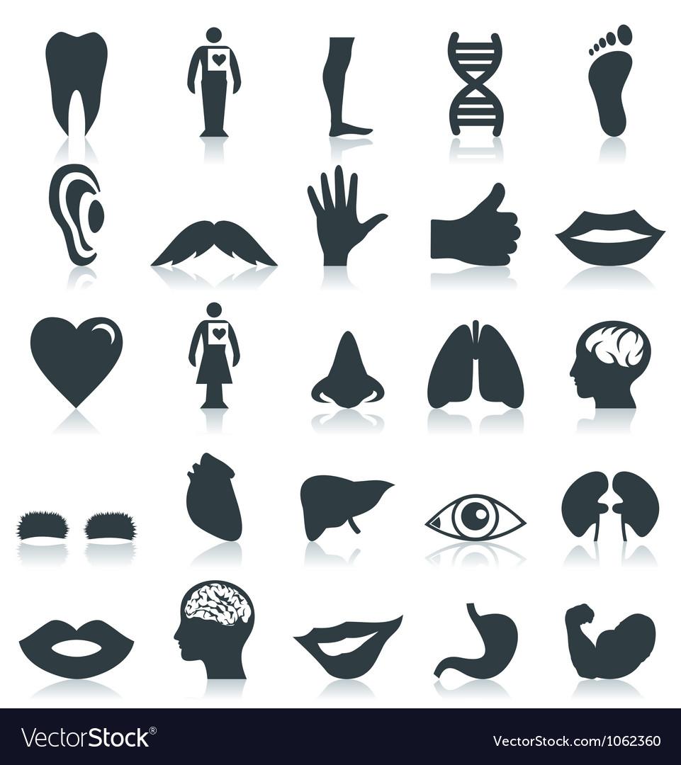 Icon a body vector image