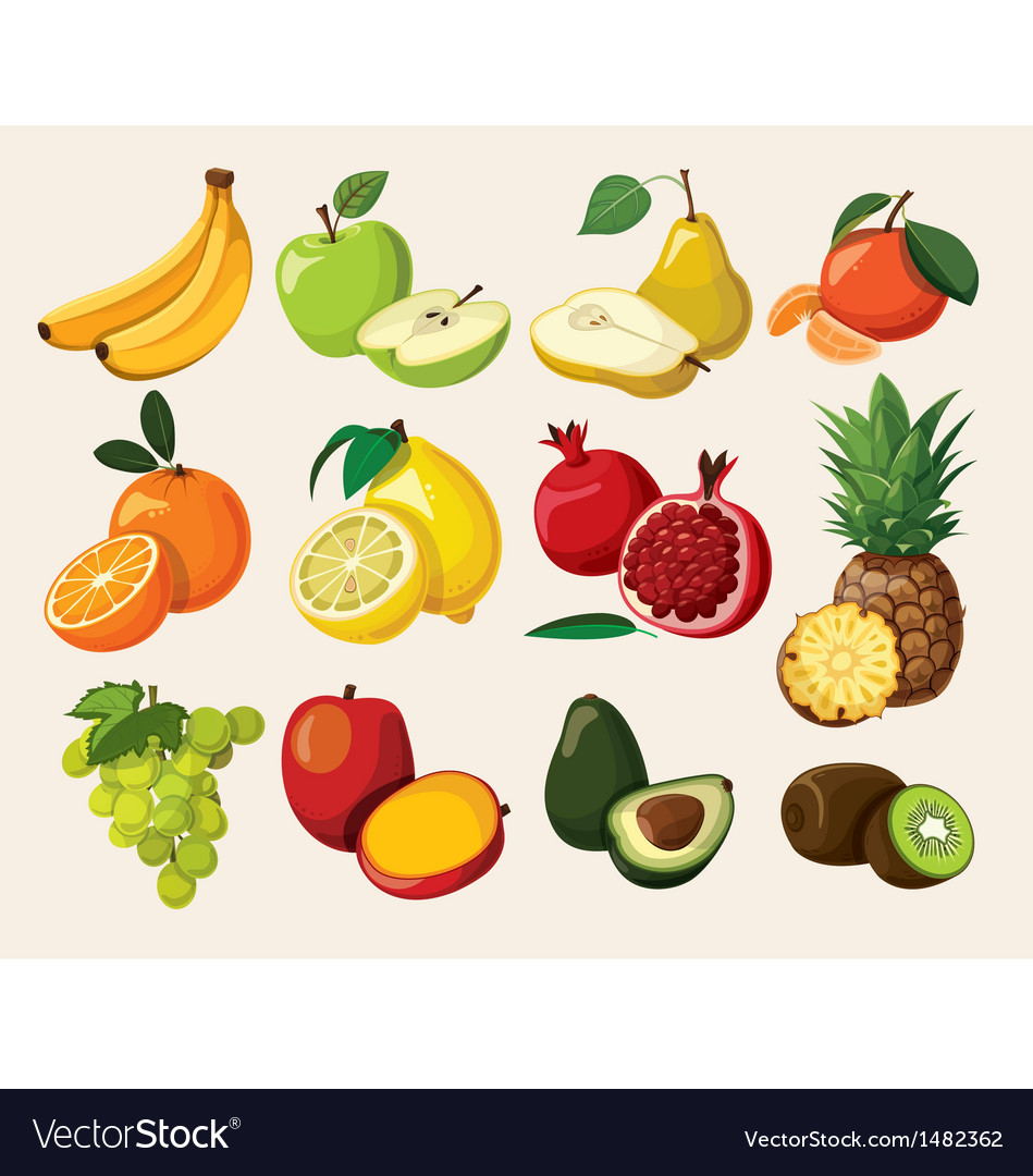 A set of delicious fruit vector image