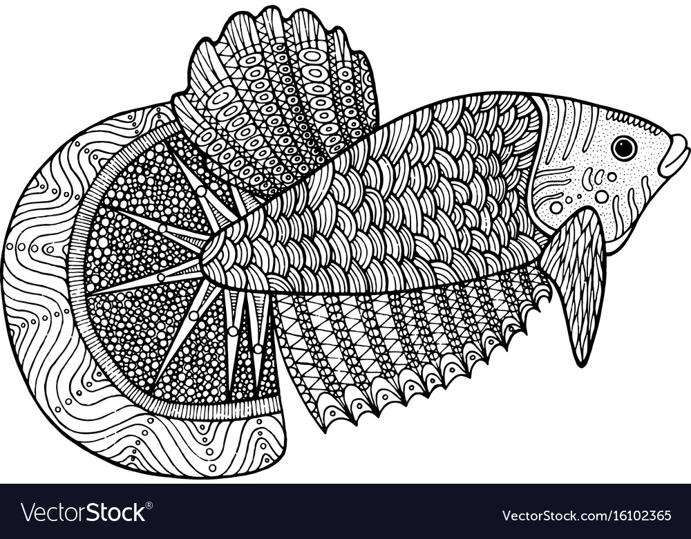 Coloring page with zentangle fish vector image