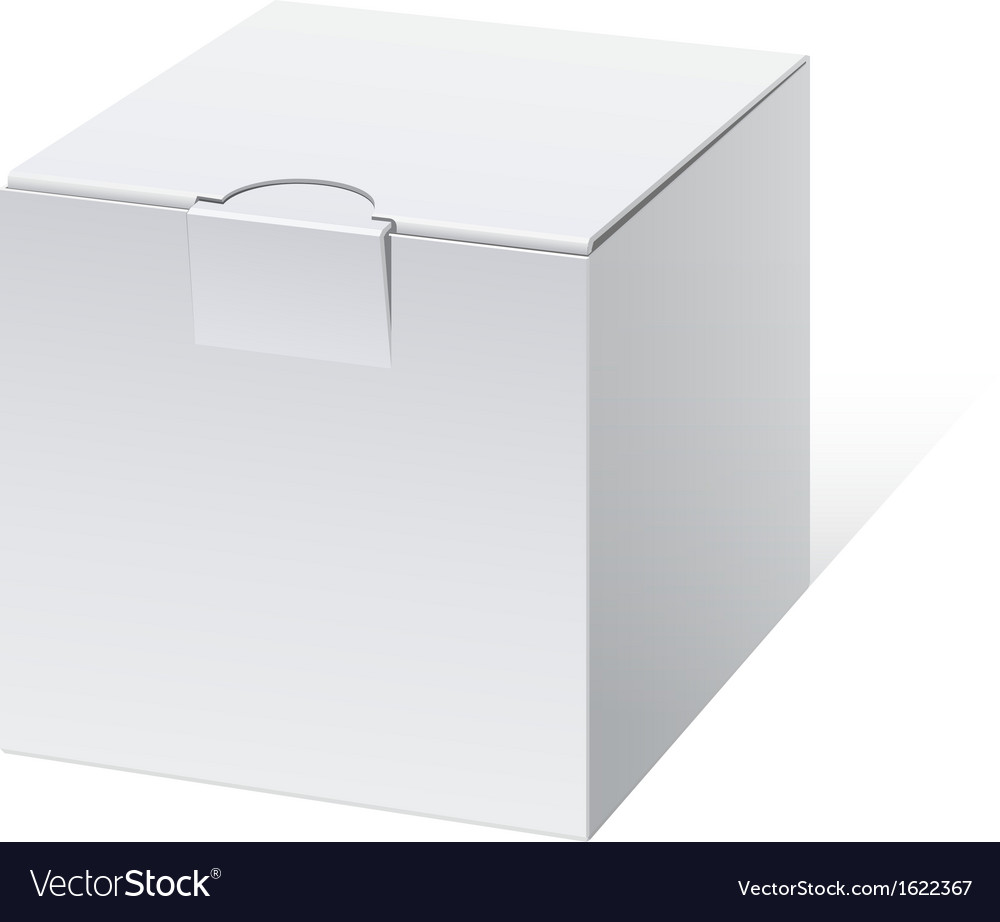 Cool Realistic White Package cube Box For Software vector image