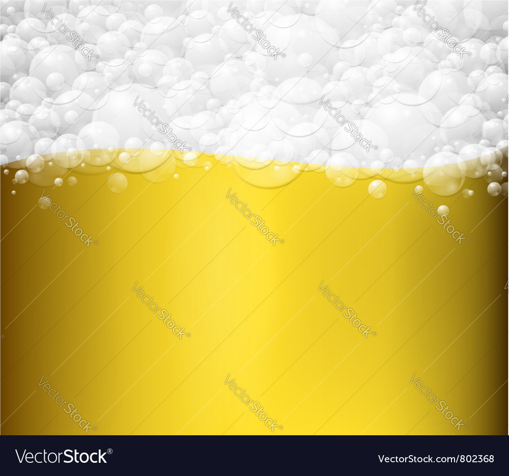Beer background vector image