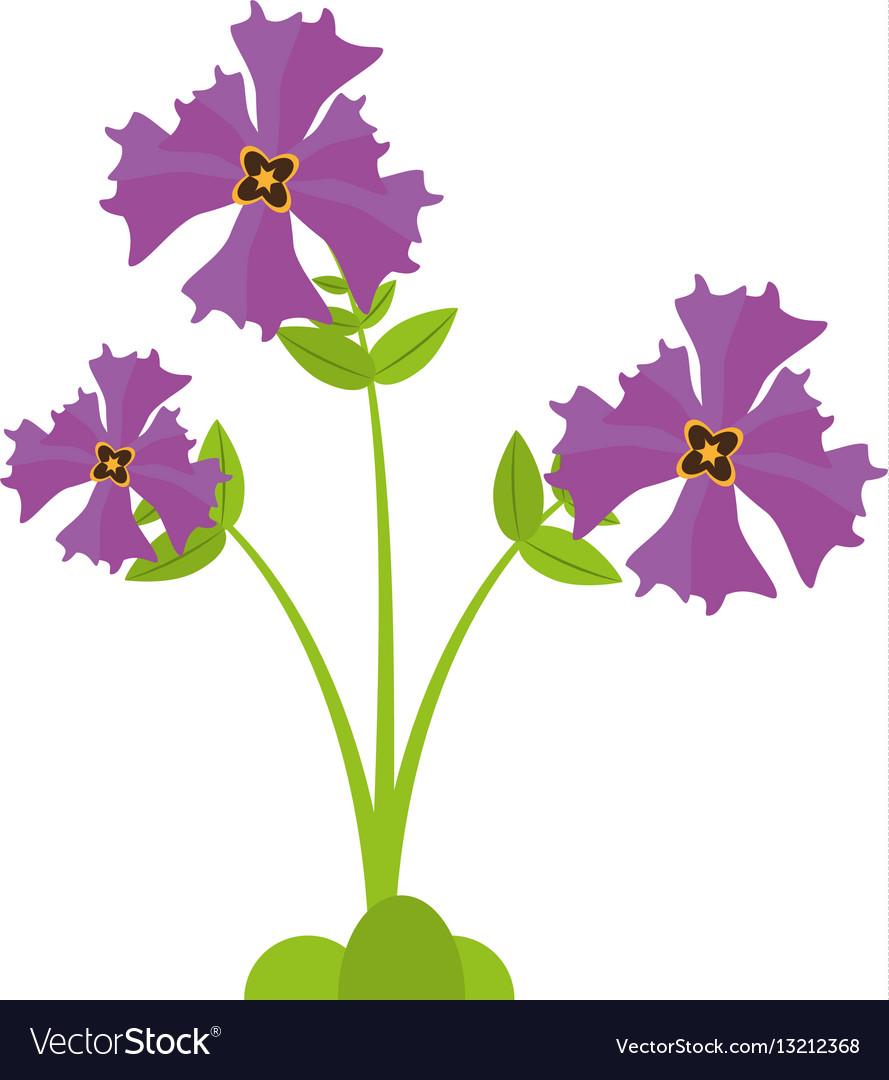 Iris flower garden botanical royalty free vector image iris flower garden botanical vector image izmirmasajfo