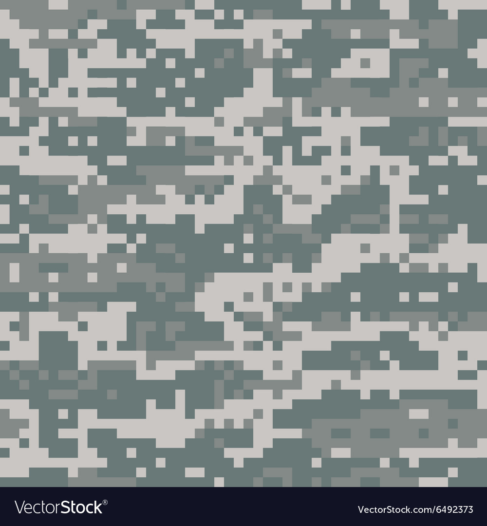 American Desert Camo Pattern vector image