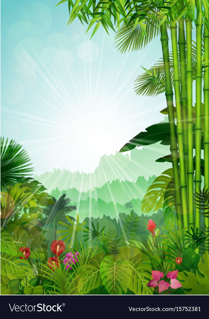 Forest landscape of tropical background vector image