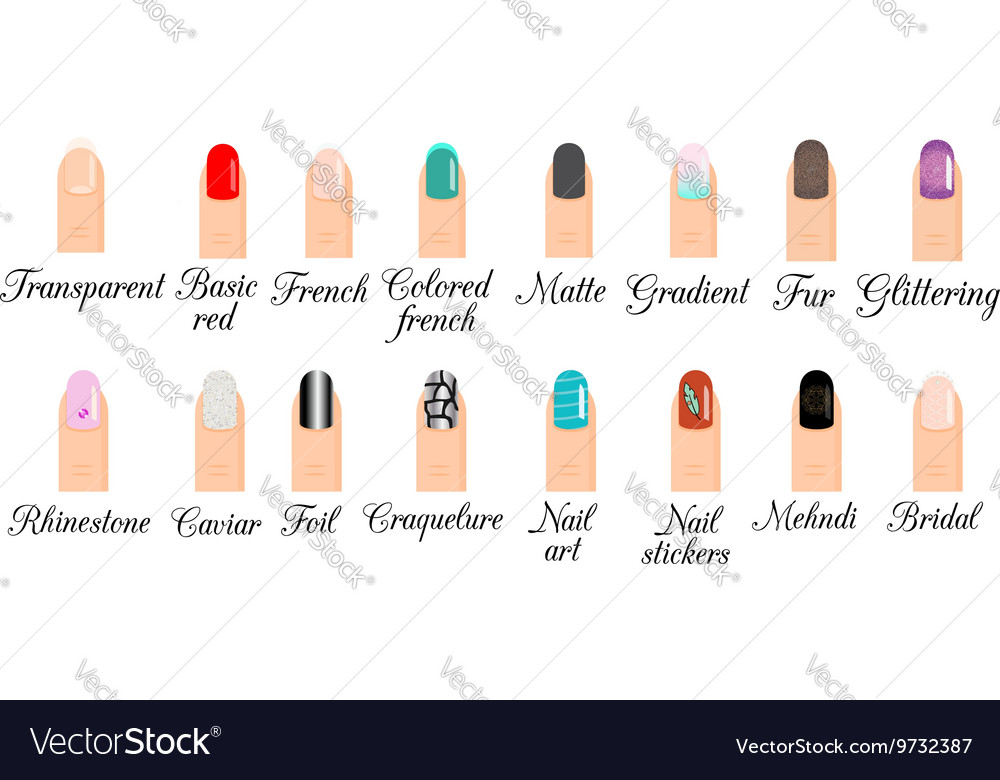 Manicure types Nail design nail art set vector image