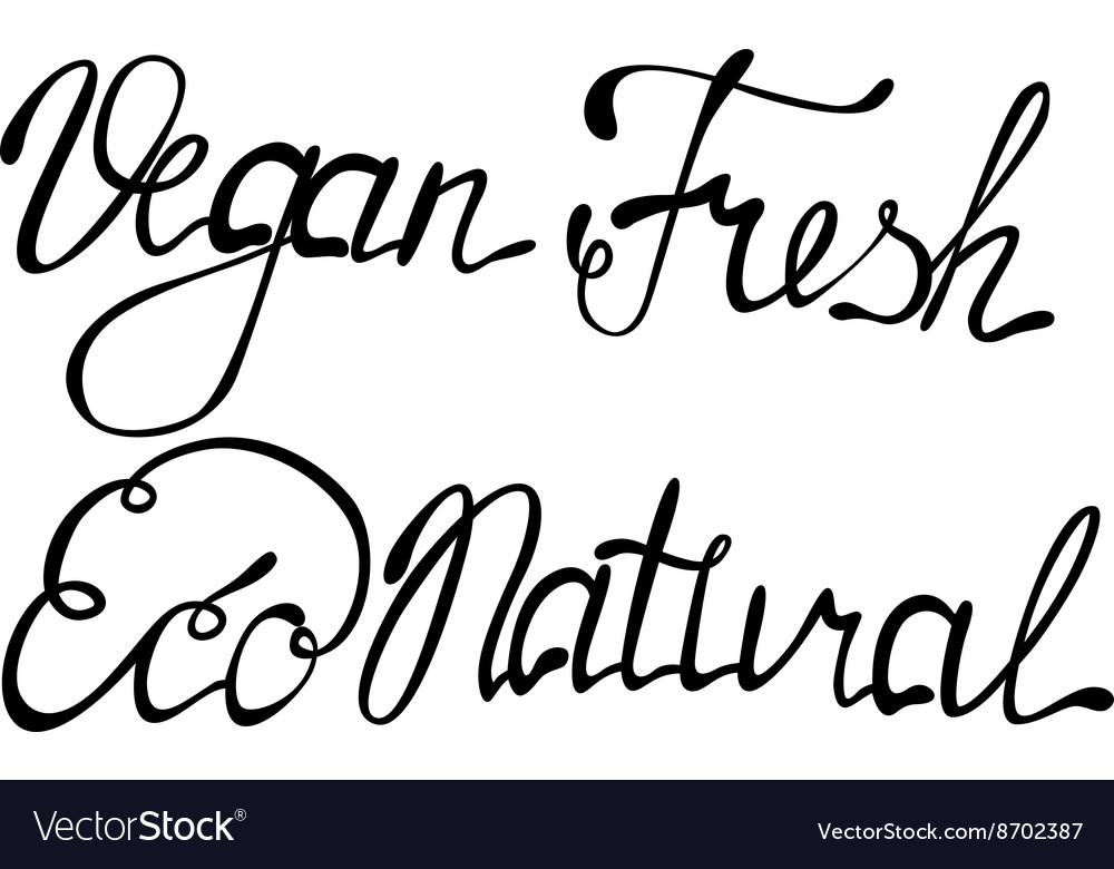 Set of vegan eco natural fresh lettering vector image